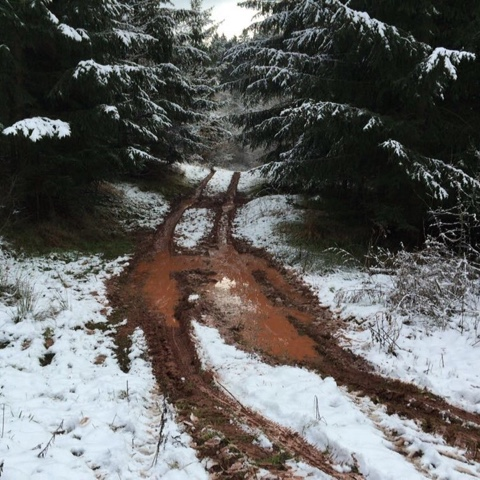 Matschige Straße im verschneiten Wald