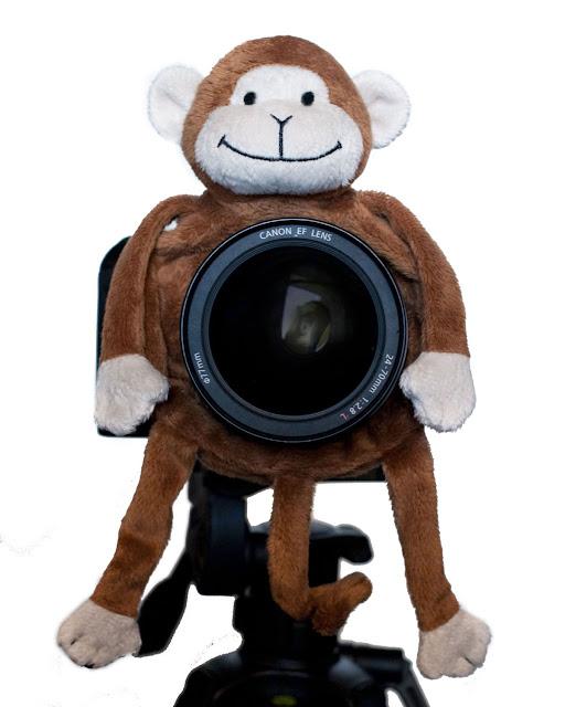 accesorio_para_camara_fotografica_para photoshoot_publivitario_de_niños_mono