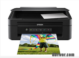 download Epson XP-203 printer's driver