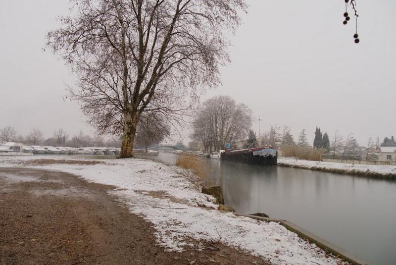 Premières neiges ...  P1130861_filtered