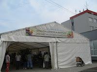 09Zöldség és gyümölcskiállítás.jpg