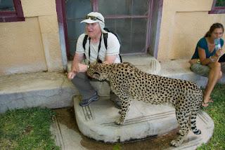 Ste za slikanje z gepardom?