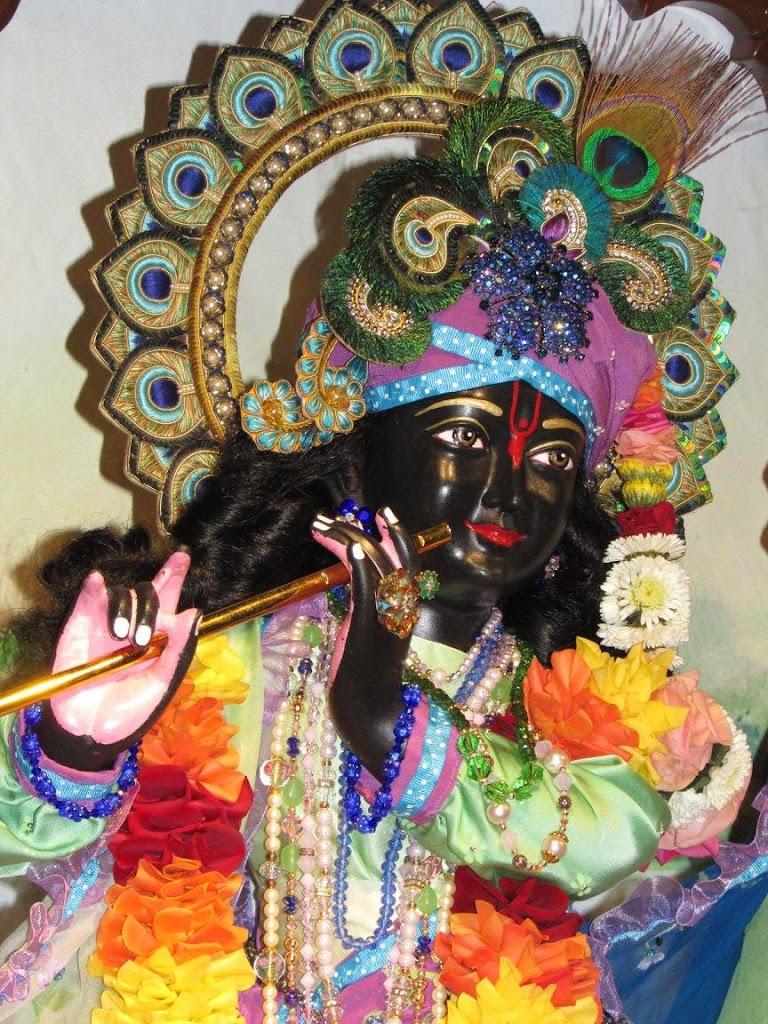 ISKCON New Goloka Deity Darshan 11 Dec 2016 (6)