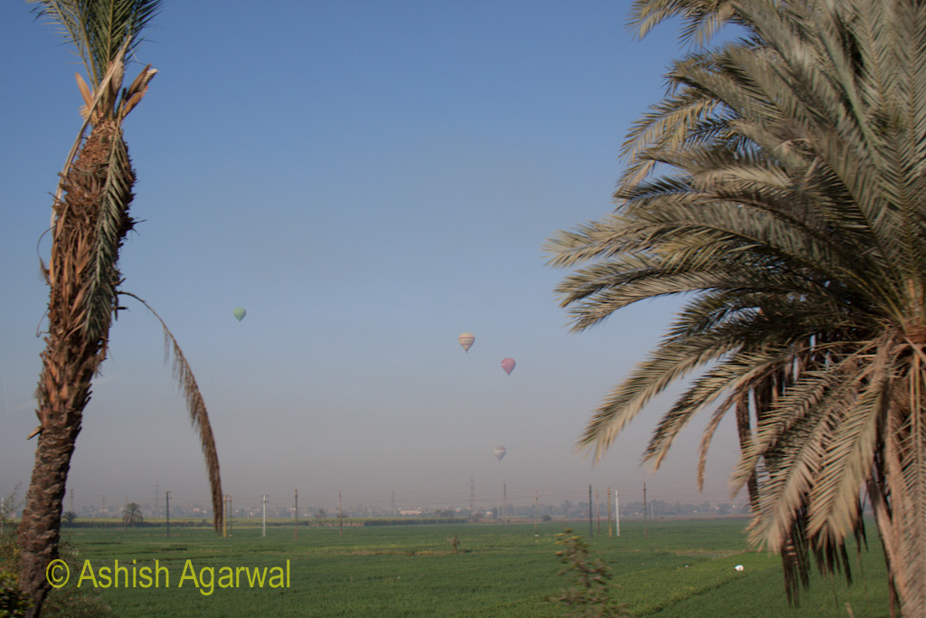 View of multiple hot air balloons in the countryside near Luxor in Egypt