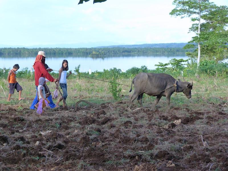 Camotes et Poron island - philippines1%2B1032.JPG