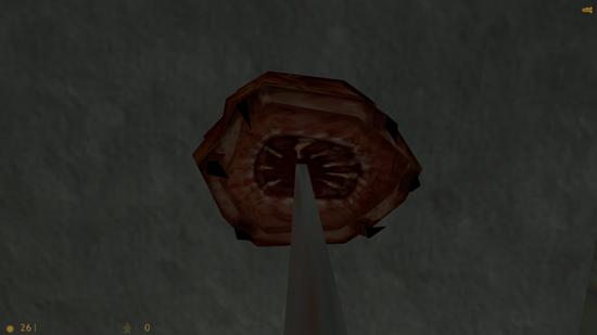 Half-Life (21)