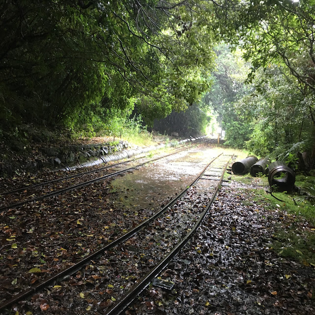Rail trail in the Waitakere Ranges