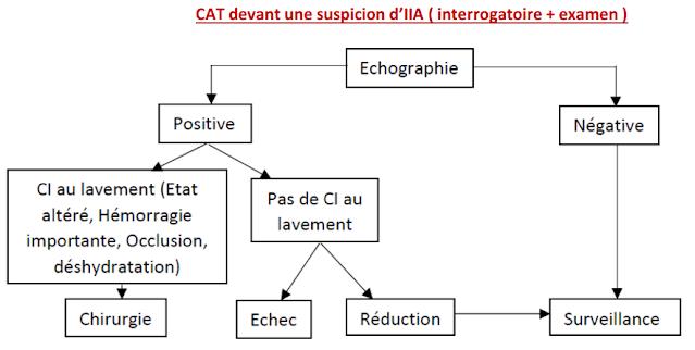 CAT devant une suspicion d'IIA