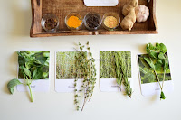 Hands-on Learning on Herbs and Spices