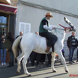 Sant Antoni 2015 - DSCF7133.jpg