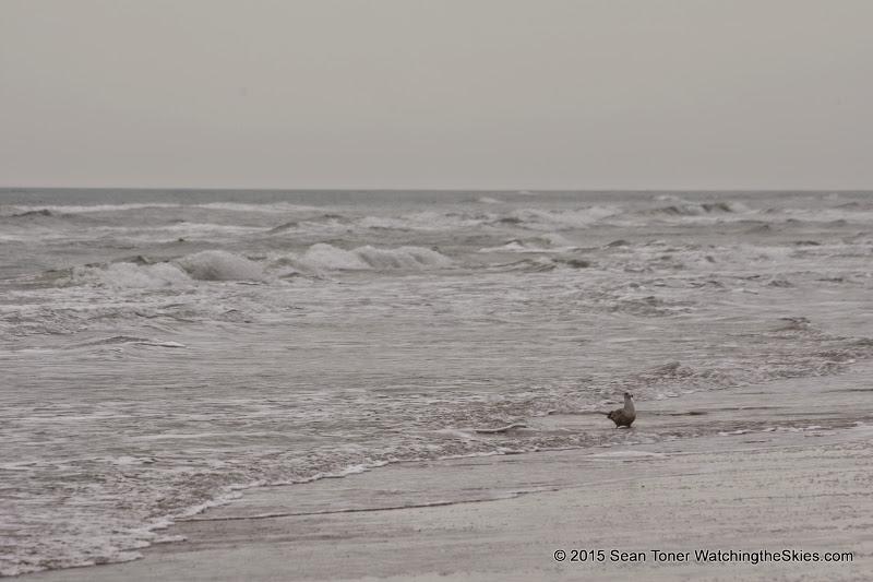 02-07-15 Corpus Christi & South Padre Island - _IMG0438.JPG