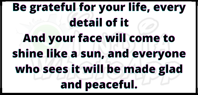 Be grateful for your life, every detail of it And your face will come to shine like a sun, and everyone who sees it will be made glad and peaceful.