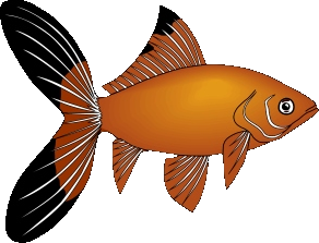 fisk050.png