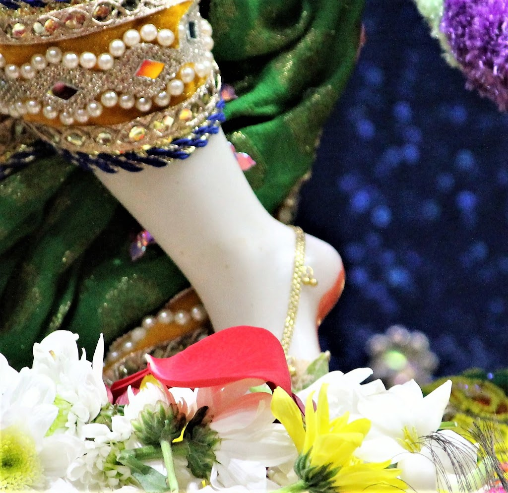 ISKCON Punjabi Bagh Deity Darshan 10 Jan 2017 (4)
