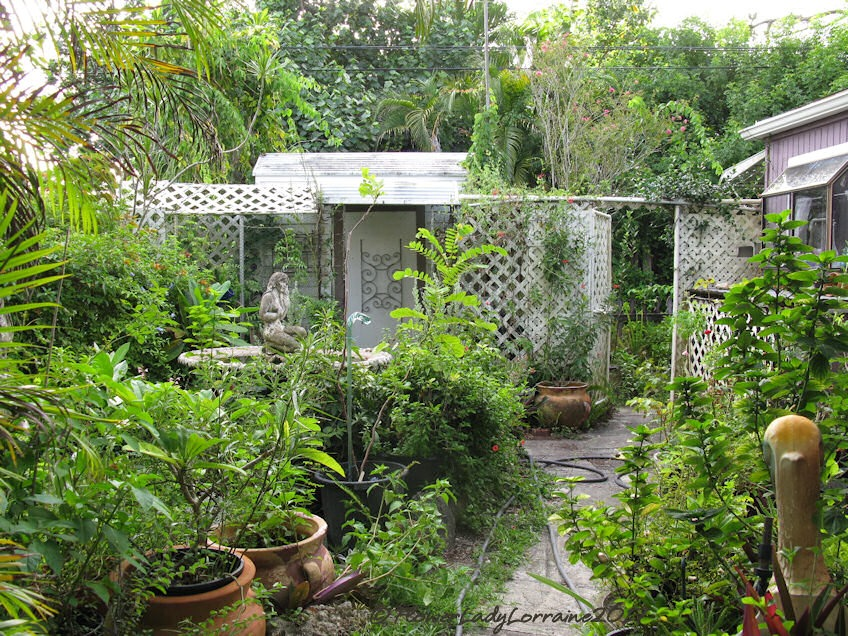 [08-23-secret-garden%5B5%5D]