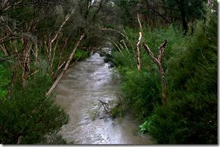 IMGP3413_HDR_Dandenong Creek