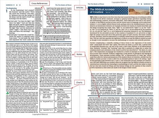 Genesis pages 12 - 13 NIV Study Bible