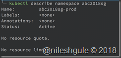 describe namespace