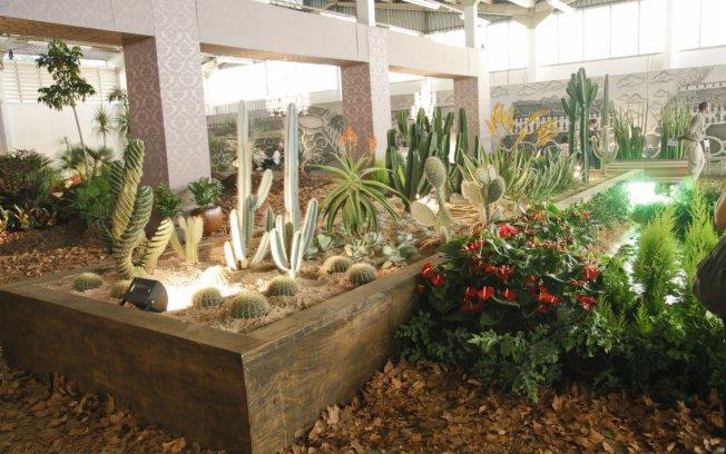 Orquidário OrquivivA Jardins de Cactos