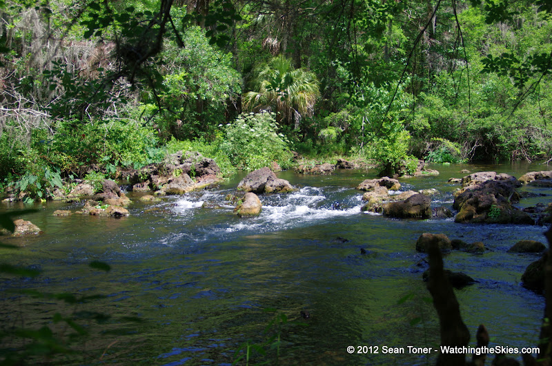 04-04-12 Hillsborough River State Park - IMGP9651.JPG