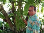 Berbakat, Tangan Dingin Saiful Sukses Menghijaukan Pekarangan SMA N 3 Bireuen