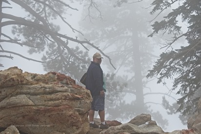 Borrego Springs - Rockhouse Trail