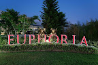 Фото 8 Euphoria Palm Beach Resort ex. Majesty Club Palm Beach