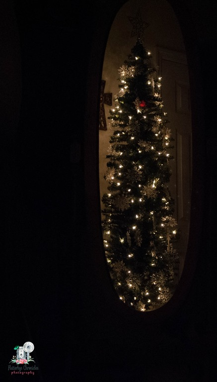 [Christmas+trees-3%5B9%5D]