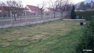 Ré-aménagent complet d'un jardin