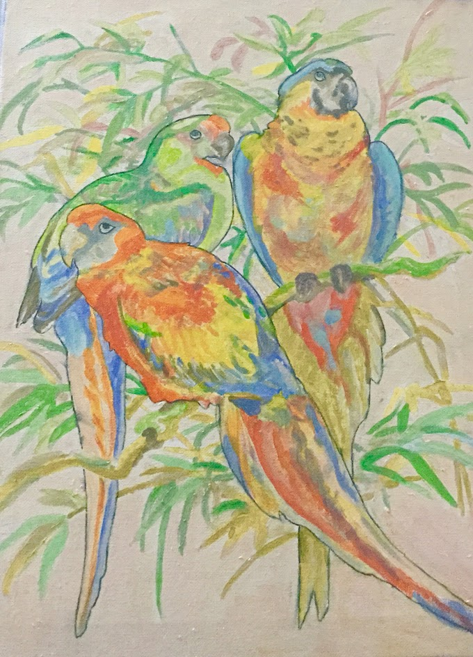 Birds....Painted And Otherwise !!!