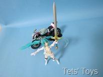 Racing Miku (8)