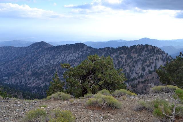 Hawkins Ridge