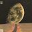 ehab saleh avatar image