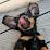 Paula Dickerhoff's profile photo