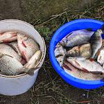 20150315_Fishing_Ostrig_032.jpg