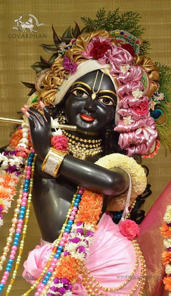 ISKCON Wada Deity Darshan 14 June  2016 (6)