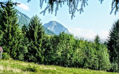 Blick Rubihorn nahe Hinanger Wassefall