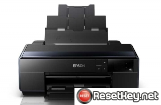 Epson SC-P600 Waste Ink Counter Reset Key