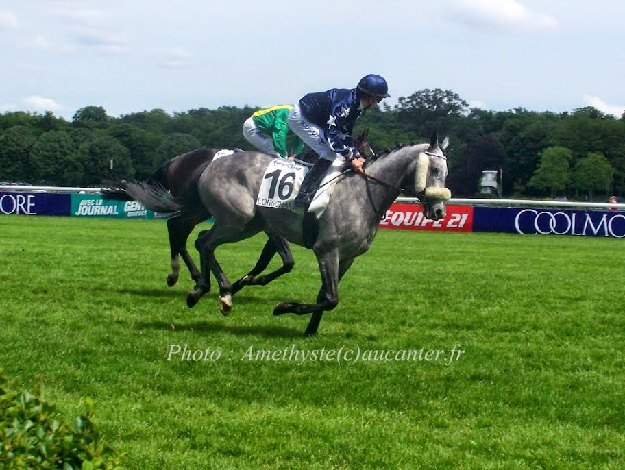 Photos Longchamp 25-05-2014 100_0049