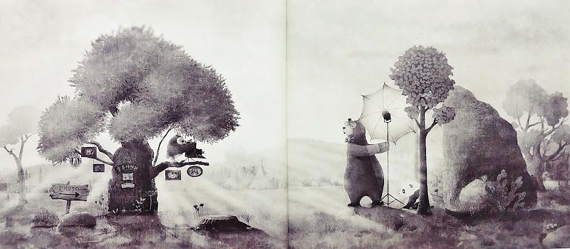 숲 속 사진관