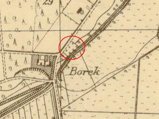 borek.PNG
