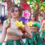 CarnavaldeNavalmoral2015_262.jpg