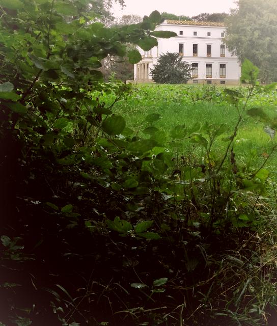 Loki Schmidt Garten: Fotografie