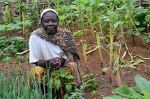 Pěstování se tradičně věnují spíše ženy.(Foto: Marcela Janáčková, ČvT)