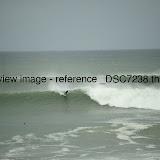 _DSC7238.thumb.jpg