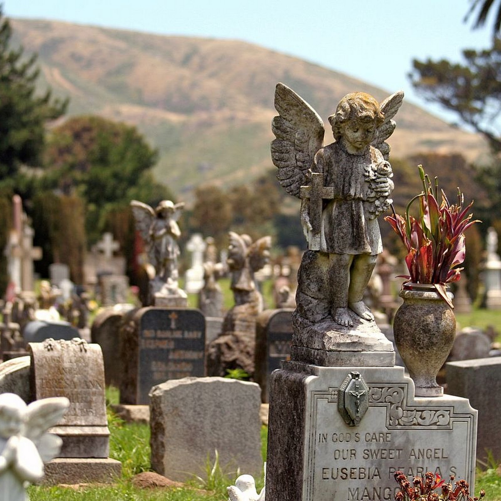 Colma, The Town of The Dead