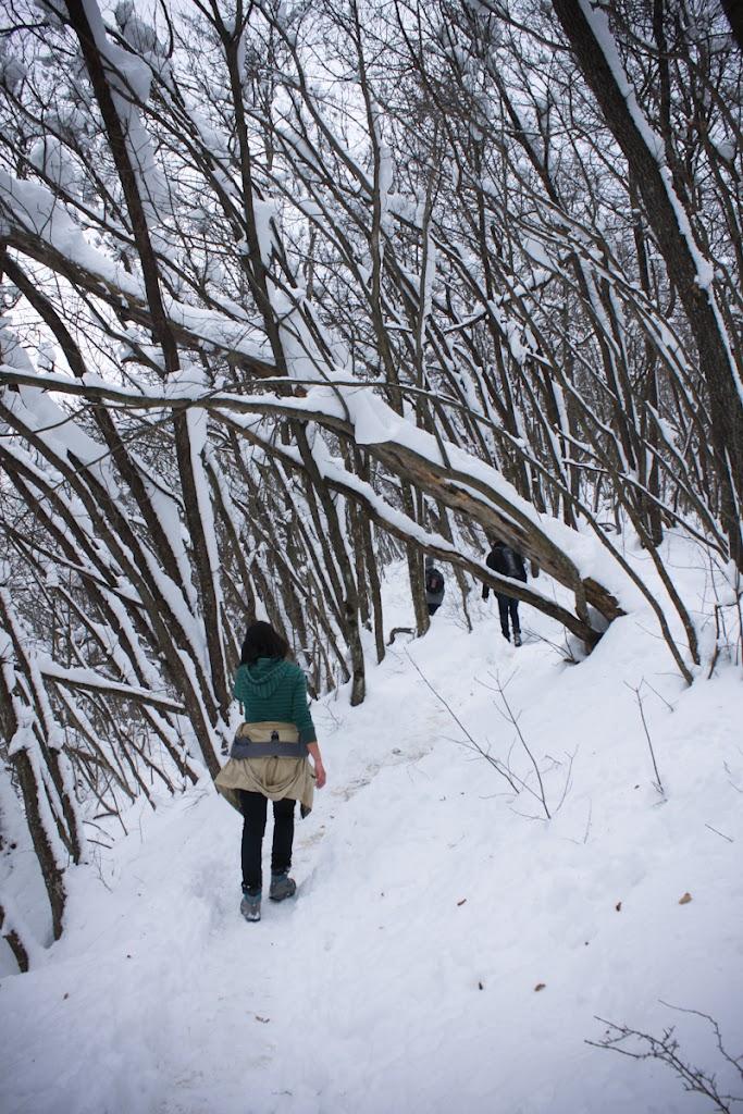 Winter Lubnik - Vika-0636.jpg