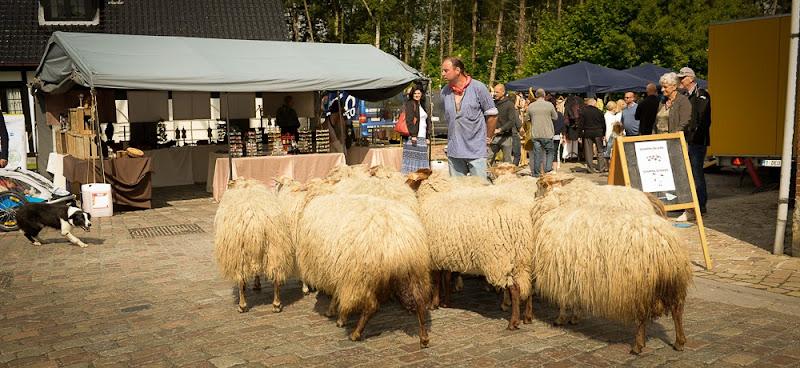 Kust- en Ambachtenmarkt 2015 DSC_4359.jpg