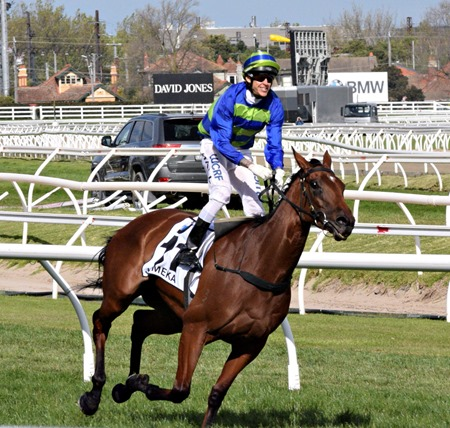 caulfield cup_jameka 3