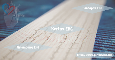 Kertas Sandapan dan Gelombang EKG